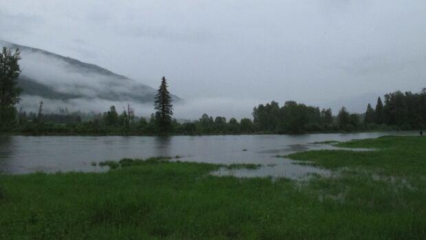 Heavy rains hit Kootenays as region braces for possible floods | CBC News