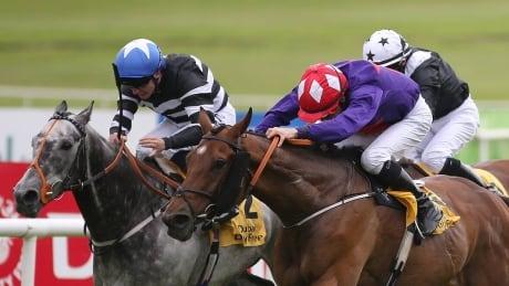 Curragh 2020 Irish Derby: Horse Racing on CBC