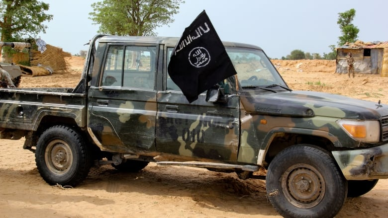 Insurgents suffer heavy casualty as troops kill 20 in Borno — Boko Haram/ISWAP