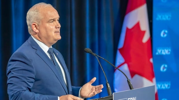 Opinion | Erin O'Toole needs to quickly define the new Conservative brand, or Liberals will do it for him | CBC News