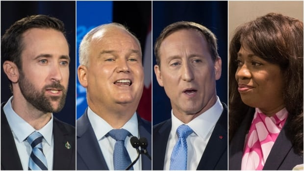 What do Conservative leadership candidates have planned for the North? | CBC News
