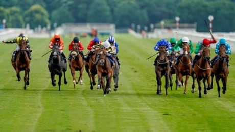 Epsom Oaks and Derby: Horse Racing on CBC