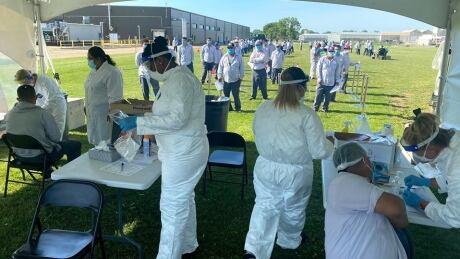 Mucci Farms COVID-19 testing Windsor-Essex