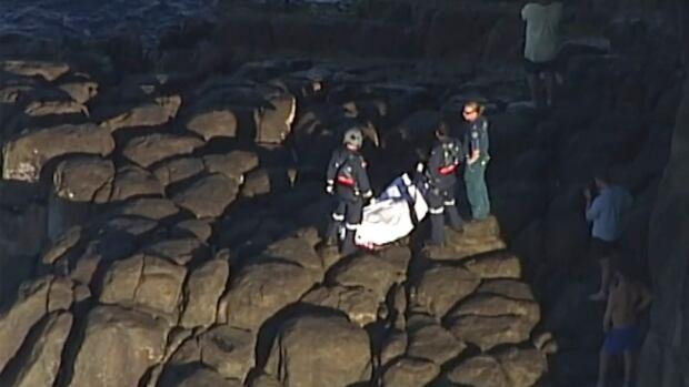 Scuba diver killed in Australia shark attack   CBC News