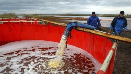 Oil Spill at Ambarnaya River near Norlisk, Russia