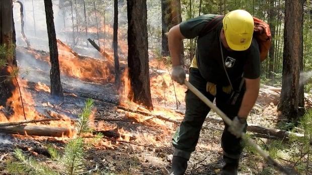 In northern Russia, Siberia burns — again | CBC News