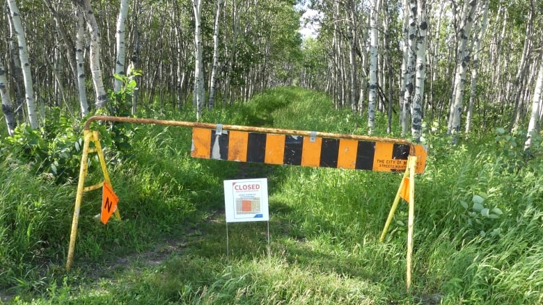 https://i.cbc.ca/1.5649985.1594777931!/fileImage/httpImage/image.JPG_gen/derivatives/16x9_780/coyotes-sign-assiniboine-forest.JPG