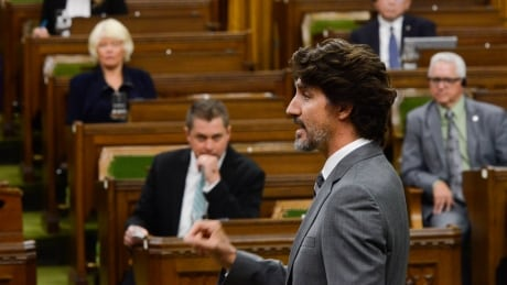 COVID Parliament 20200721