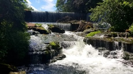 Knox's Dam Victoria Cross near Montague