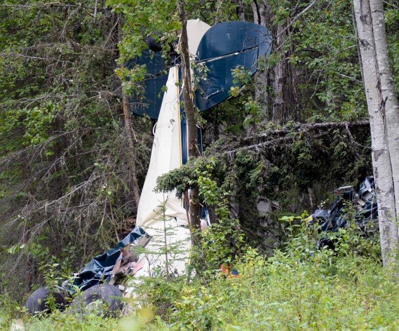 Alaska lawmaker and six others die when two planes collide midair