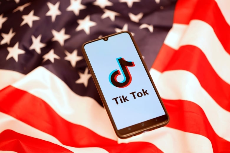 TikTok's Chinese owner offers to forego stake to clinch United States deal