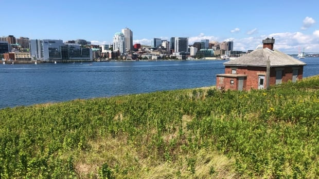Georges Island opens up to visitors — but only for the next month   CBC News