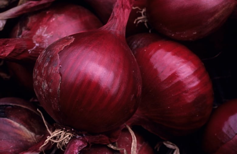 More people ill from Salmonella, ate onions from US: Public Health Agency