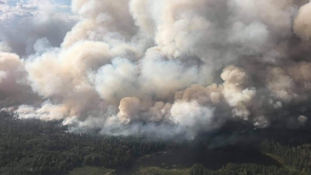 As forest fire burns 'directly towards' Red Lake, Ont., officials urge residents to leave | CBC News