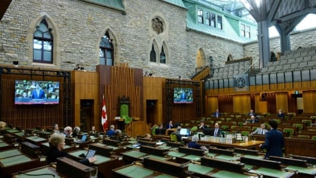 MPs debate government's response to COVID-19