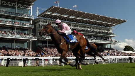 Yorkshire Ebor Festival: Horse Racing on CBC - DAY 3