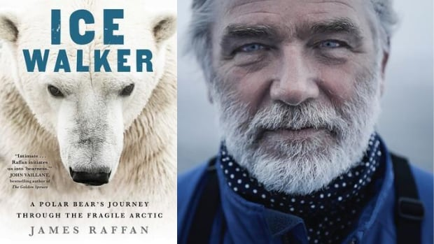 James Raffan's book Ice Walker examines the Arctic through the eyes of a polar bear