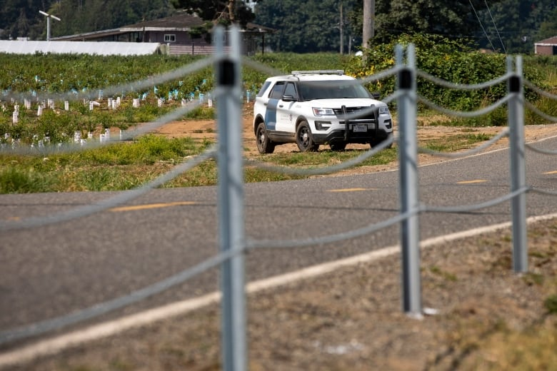 American officials install cable barrier along stretch of Canadian border in BC