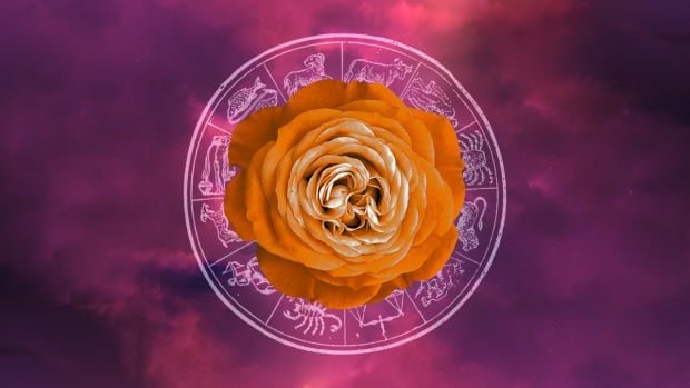 Your horoscope for the week ahead: Virgo season brings positive change | CBC Life