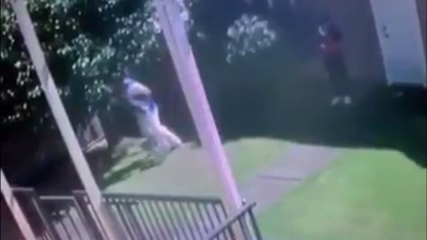 Vancouver News - Pear-picking real estate agent caught on video taking bags of fruit from backyard during showing thumbnail