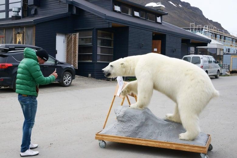 Polar bear attacks man on Norway's remote Svalbard islands, killing him