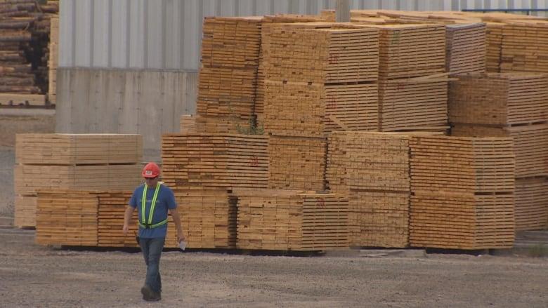 elmsdale lumber