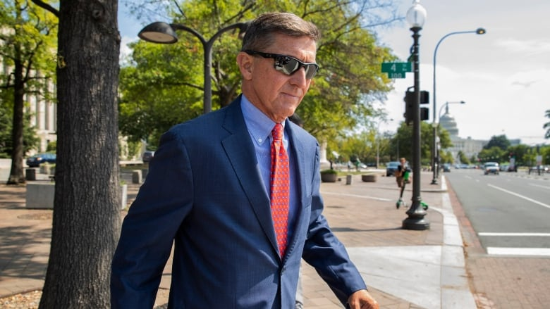 Michael Flynn dismissal bid a 'politically motivated favour,' appointee argues to court