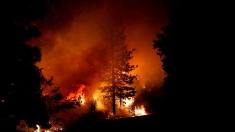 CALIFORNIA-WILDFIRE/RESCUE