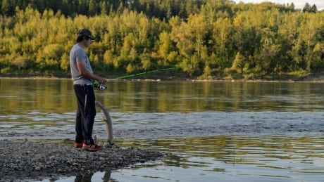 North Saskatchewan Fishing