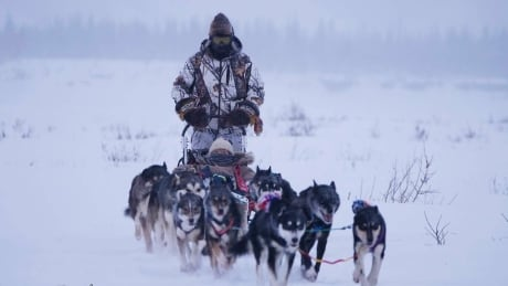 Paul Josie dog sled team
