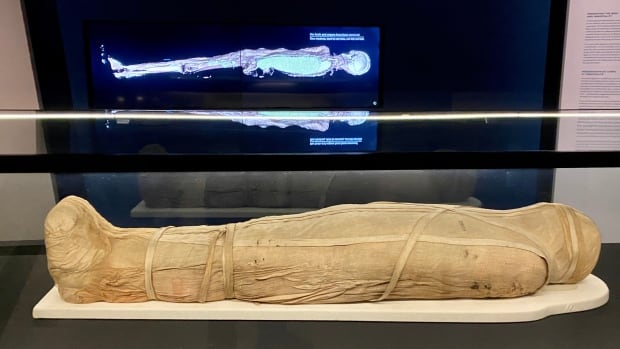New ROM exhibit digitally unravels inner remains of Egyptian mummies