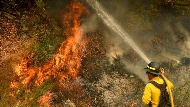 California firefighter dies battling massive El Dorado blaze