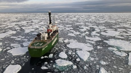 CLIMATE-CHANGE/SEA ICE