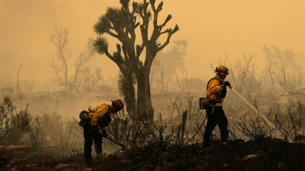 California wildfire threatens over 1,000 homes