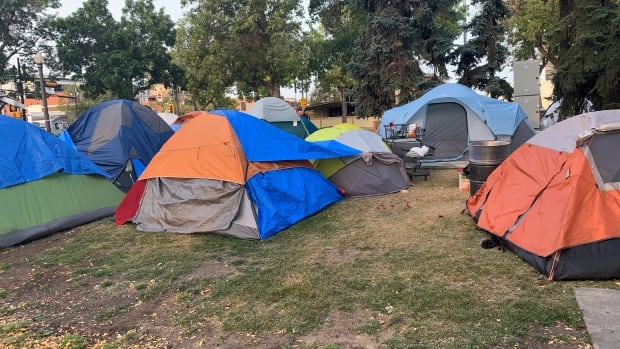 Edmonton mayor flags homelessness as key issue for next council to address