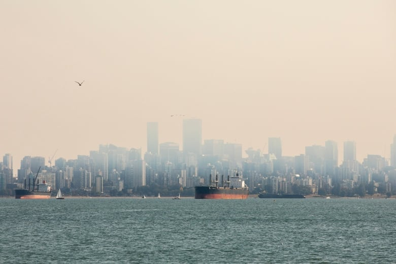 wildfire haze smoke