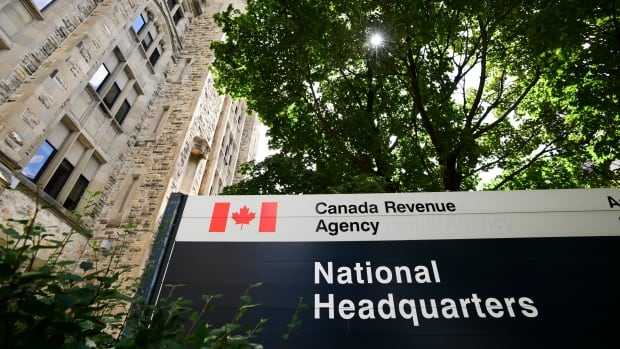 B.C. businessman jailed, fined almost $650K for tax evasion | CBC News