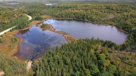 N.S. may poison lake to rid invasive species