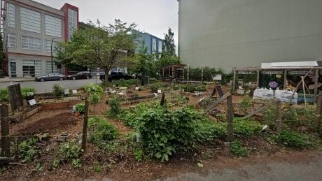 coFood Collaborative Garden Project