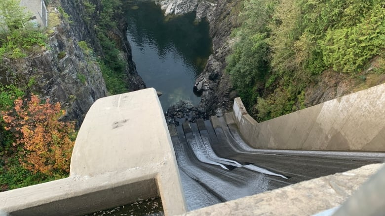 3 Vancouver Employees fired after fatal Cleveland Dam water surge thumbnail