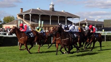 2020 British Champions Day: Horse Racing on CBC
