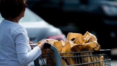 Plastic Bags 20190815