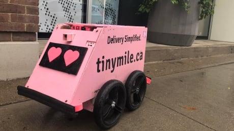 Geoffrey the robot