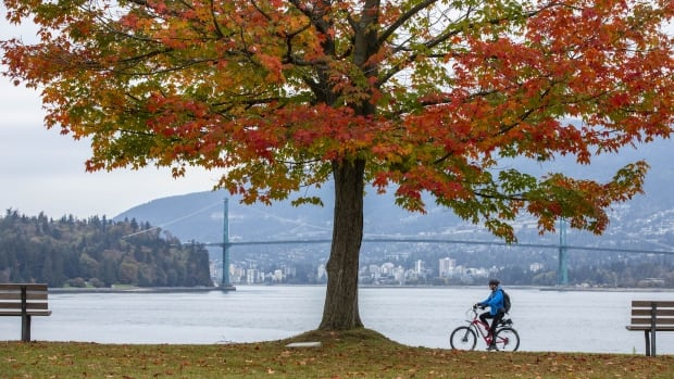 Change is in the air as Vancouver falls deeper into autumn | CBC News