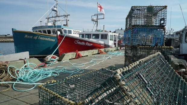 Sipekne'katik backs out of commercial lobster season citing fears over safety