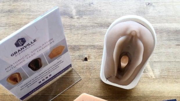 Biomedicine company aims to enhance women's health training with 3D-printed vaginas | CBC News