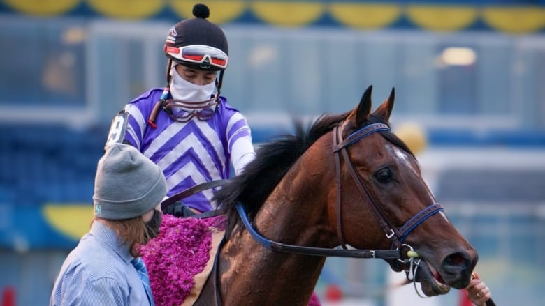 Belichick Catches Breeders' Stakes to deny 1-eyed Mighty Heart the Canadian Triple Crown thumbnail