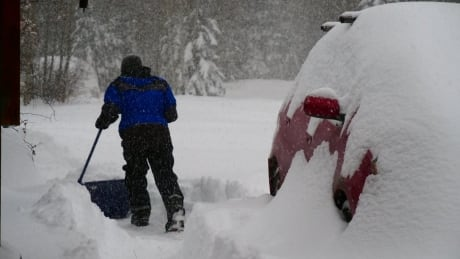 Whitehorse snow