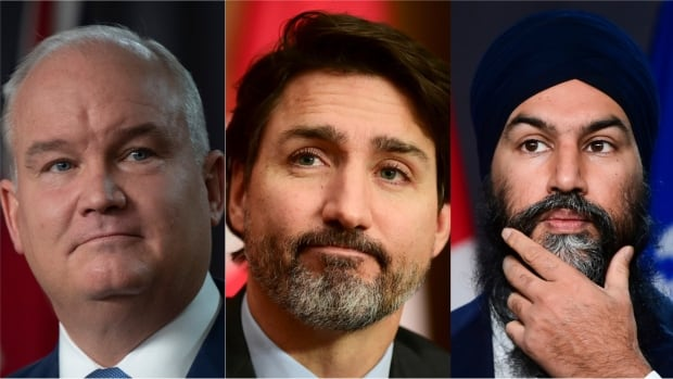 Grappling with how to press the virtual flesh, parties gear up for election showdown   CBC News
