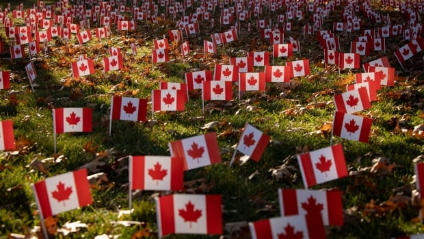 Ceremonies go online, but Remembrance Day endures in Toronto amid pandemic thumbnail